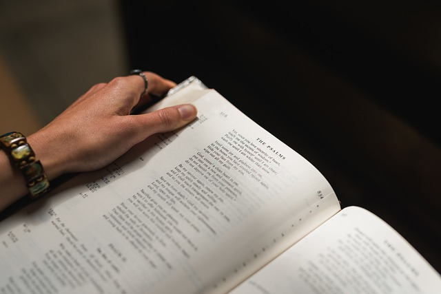bible-1850859_640